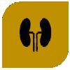 phyto cannabinoid extracts