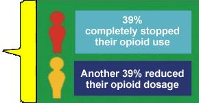 opiates eradication program results